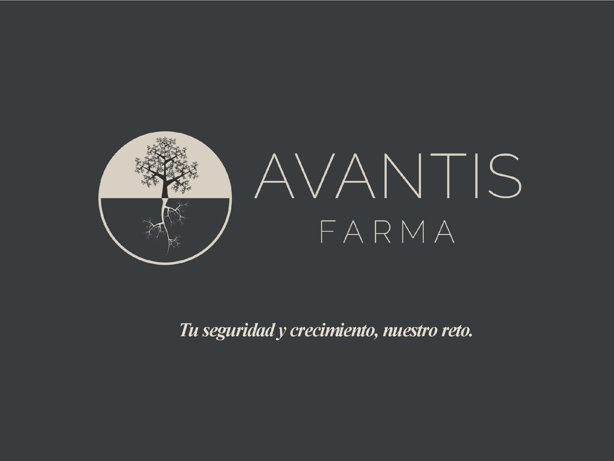 CARROUSEL_WEB_Media_Marketing_Avantis_Farma_13